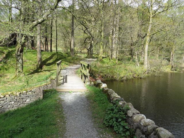 Footbridge, Yew Tree Tarn
