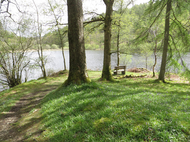 Seat by Yew Tree Tarn