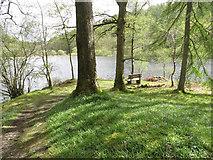 NY3200 : Seat by Yew Tree Tarn by Pauline E