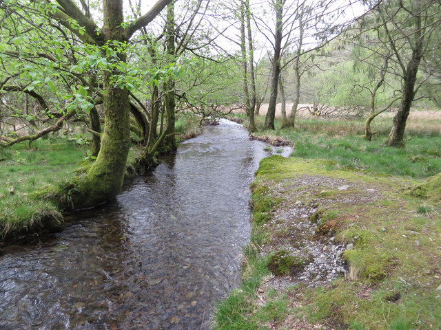 Guards Beck, downstream view