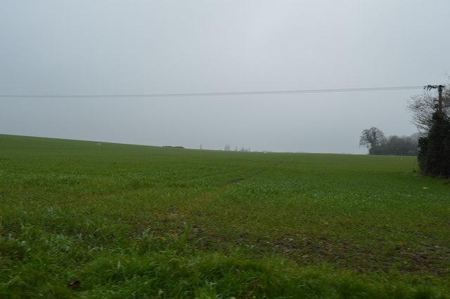 Farmland by Low St