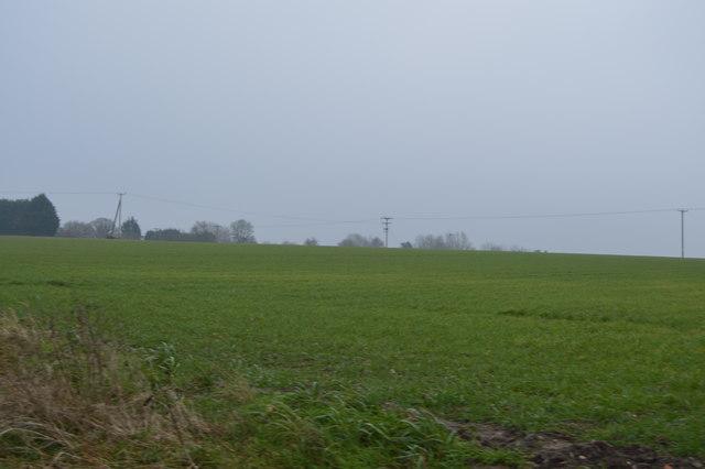 Farmland south of Low St