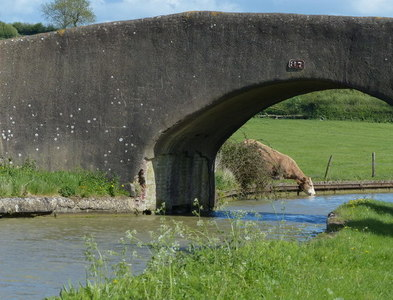 SP5267 : Bridge 87 crossing the Oxford Canal by Mat Fascione