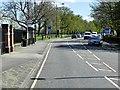 TQ1568 : A308, Hampton Court Green by David Dixon