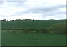 TM0461 : Farmland towards Bush's Farm by JThomas