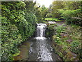 NZ2567 : Waterfall, Jesmond Dene by Paul Gillett