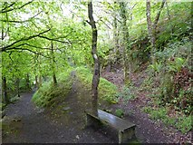 SX6094 : Former quarry, Ball Hill,  Okehampton by David Smith