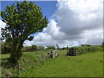SX6194 : Footpath crossing fields on Tor Down by David Smith