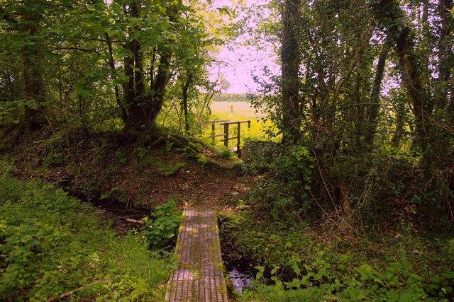 Footbridges near Llandissilio