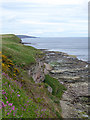 NT9855 : Cliffs and wave-cut platform north of Berwick-upon-Tweed by Oliver Dixon