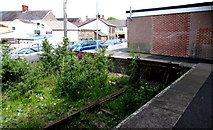 SN1916 : Weedy  end of a disused bay platform at Whitland railway station by Jaggery
