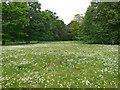 TQ1477 : Osterley Park House Gardens by Paul Gillett