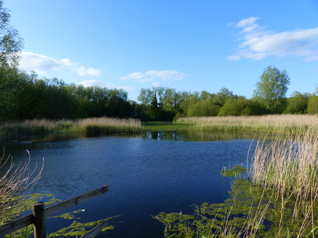 Lake seen from bird watching hide, Magor Marshes Nature Reserve