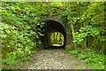 SX5265 : Disused Railway Bridge by Guy Wareham