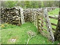 NY3120 : Old gateposts, south of Low Bridge End Farm by Christine Johnstone