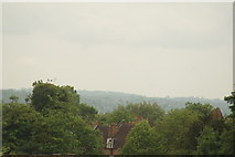TQ3370 : View of the southeast from the Crystal Palace terrace #42 by Robert Lamb