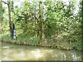 ST8459 : Artwork, on the south bank of the Kennet & Avon Canal by Christine Johnstone