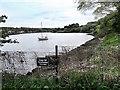 NZ2663 : Contaminated Tidal Mud Flats by Mick Garratt