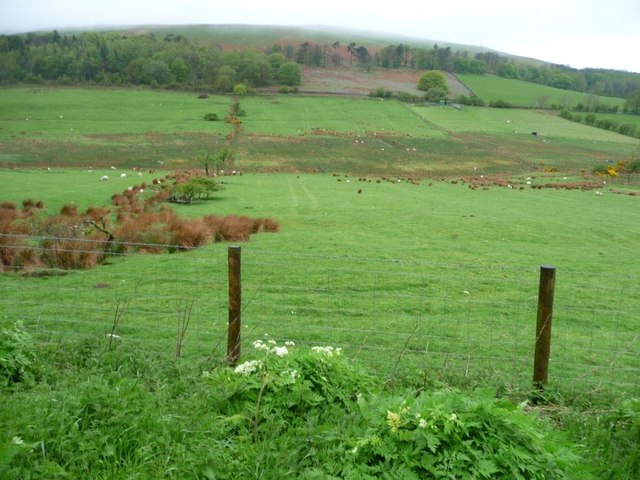 Former field boundary, near Rosthwaite Beck