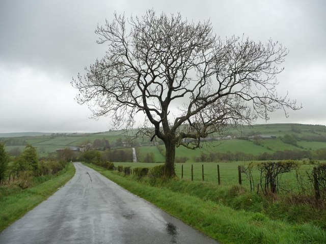 The Road to Uldale, looking north-east