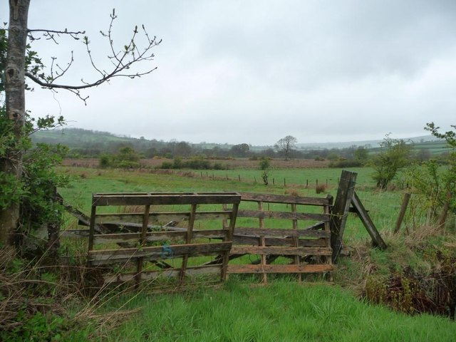 Field gate, south-west of Uldale