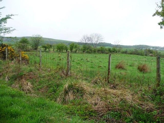Contrasting field boundaries south-west of Uldale