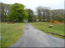 NY3141 : Public bridleway east to the B5299 by Christine Johnstone