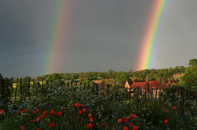 Double rainbow and flowery bank