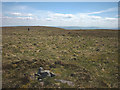 NY7822 : Little Fell summit (748m) by Karl and Ali