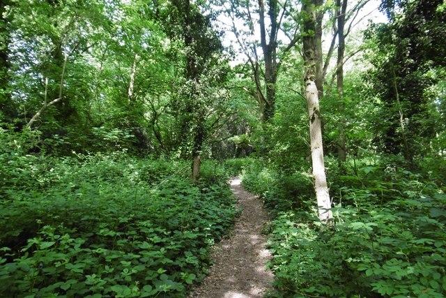 Kemnal Manor, path