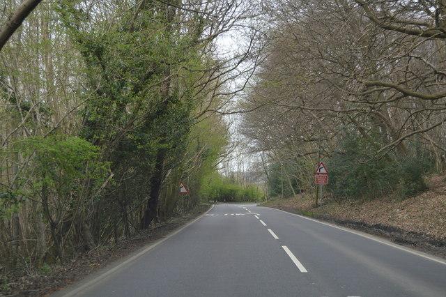 A264 through Bulbank Wood
