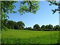 TQ3231 : Oaks Meadow by Simon Carey