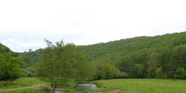 Exe valley from Hele Bridge
