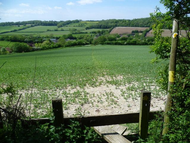The Elham Valley Way descends to Wingmore