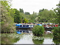 TQ0588 : Narrowboat Summer Wine, of Aynho, in Harefield Marina by David Hawgood