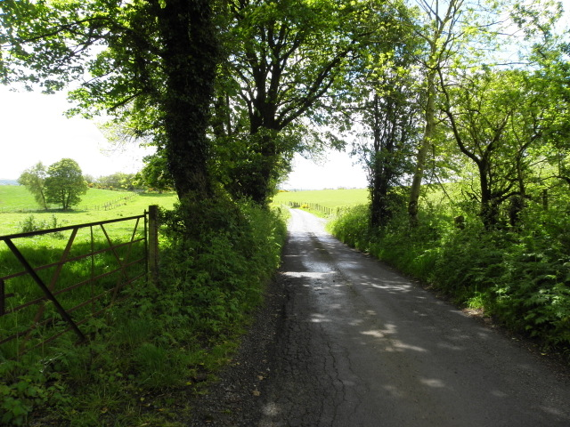 Shinnagh Road, Mullaghslin Glebe