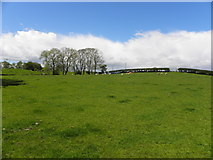 H5572 : Basically blue, white and green, Mullaghslin Glebe by Kenneth  Allen