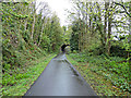 NS4473 : National Cycle Network Route 7 at Bowling by Thomas Nugent