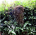 SO5510 : Old milestone, Newland by Jaggery