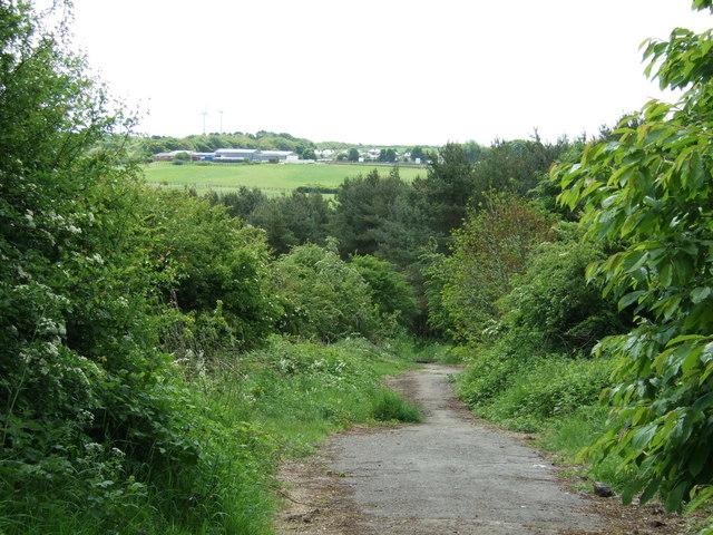 Farm track (footpath) off Elemore Lane