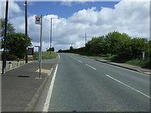NZ3549 : Bus stop on Gillas Lane (B1404) by JThomas