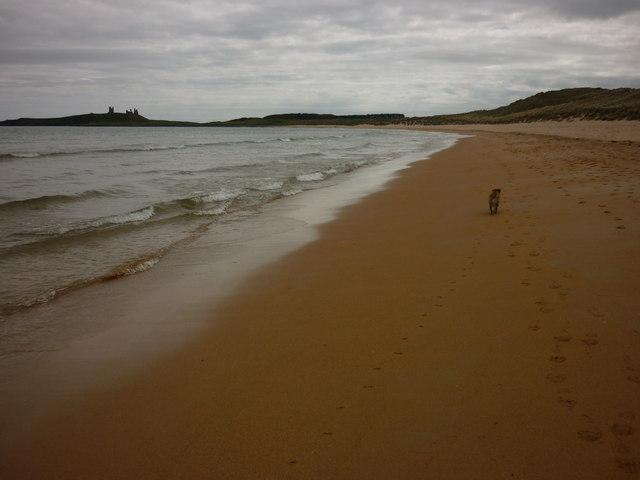 The Due, Embleton Bay