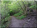 NY7146 : Riverside path south of Alston Bridge by Andrew Curtis