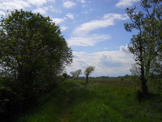 Footpath alongside South Drain near Etton