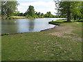 TQ0081 : Cattle beach, Langley Park lake by David Hawgood