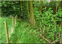 SE0722 : Sowerby Bridge FP148 (15) by Humphrey Bolton