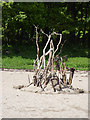 NX4744 : Pile of sticks, Rigg Bay by Oliver Dixon