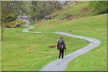 NY3307 : Path to Grasmere village by Jim Barton