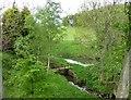 NZ1484 : Pond beside the Molesden Burn by Russel Wills