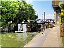 TQ3283 : Regent's Canal below Sturt's Lock by David Dixon